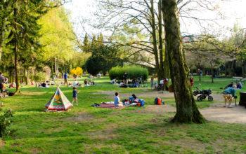 Sommerszene im Wohlerspark. Kinder spielen. Es wird gegrillt.